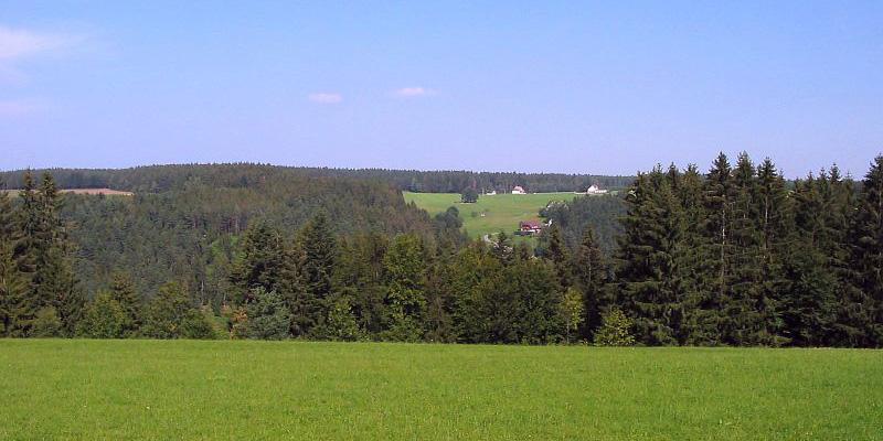 Auf der Eichbachhöhe, Blick auf Auerhahn