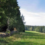 Auerhahnwanderweg auf der Eichbachhöhe