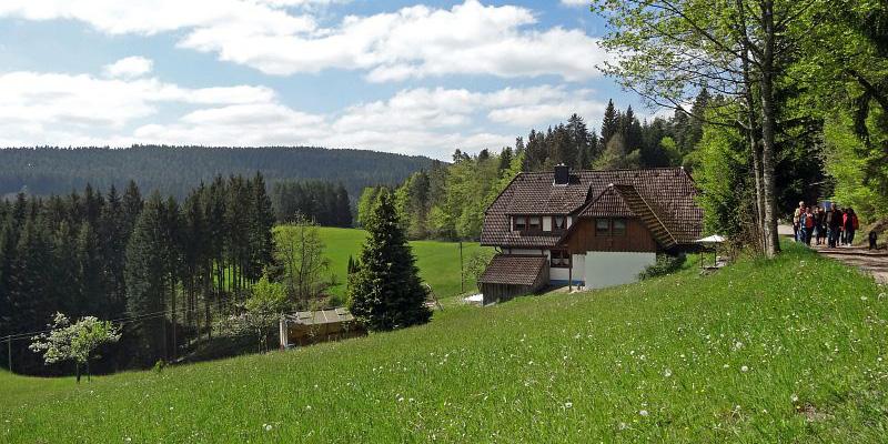 Auerhahnwanderweg auf dem Sommermoos