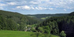 Blick ins Tal vom Sommermoos