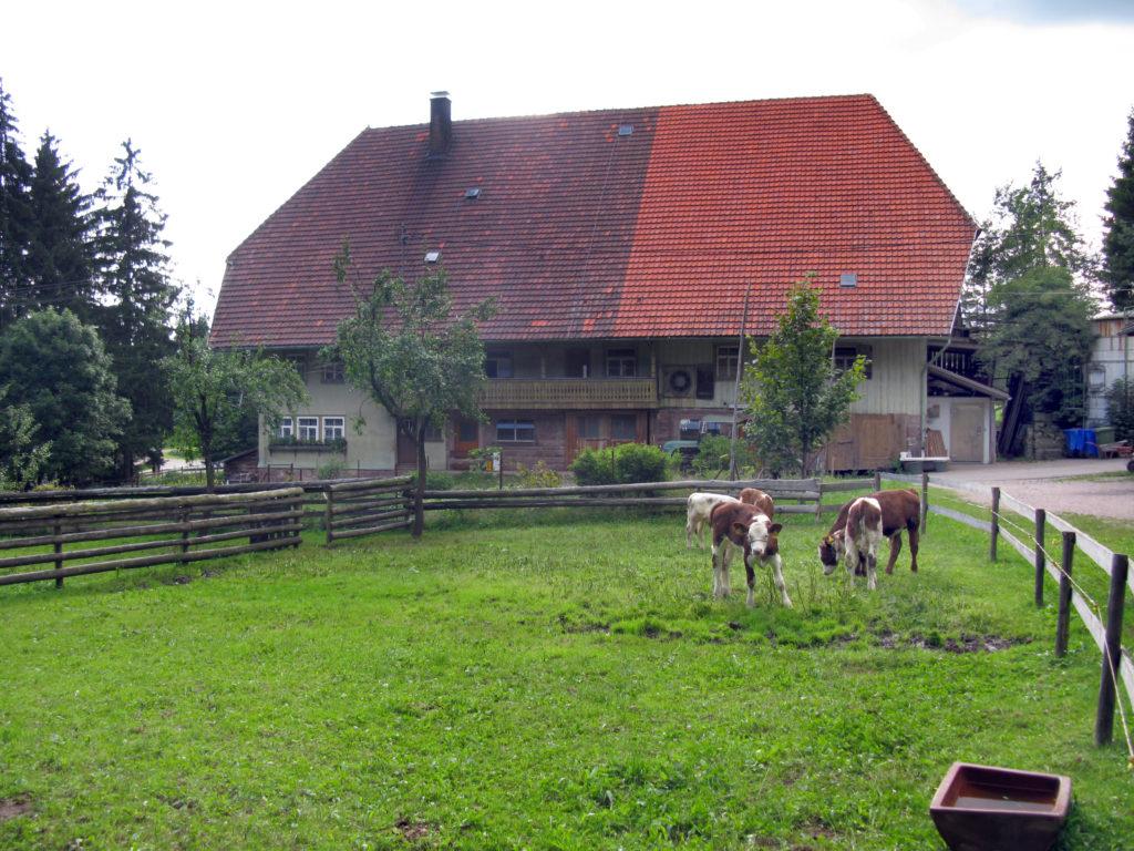 Oberer Remsbauernhof